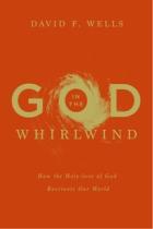 GodinWhirlwind-DFWells