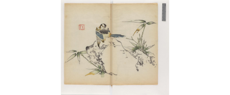 1633-Chinese-multicolor book