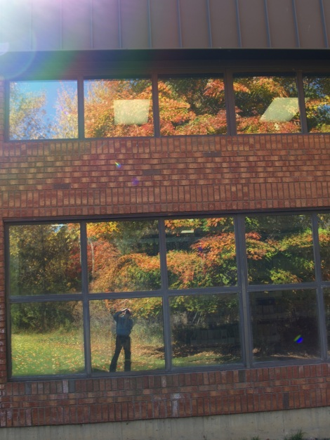 A unique shot - reflection in the large library windows of beautiful maple behind seminary