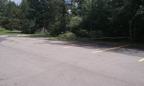 downed-branches-parkinglot-Aug-2016