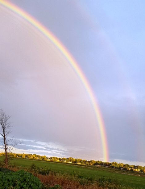 rainbow-aug-2016-1