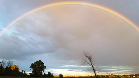 rainbow-aug-2016-2